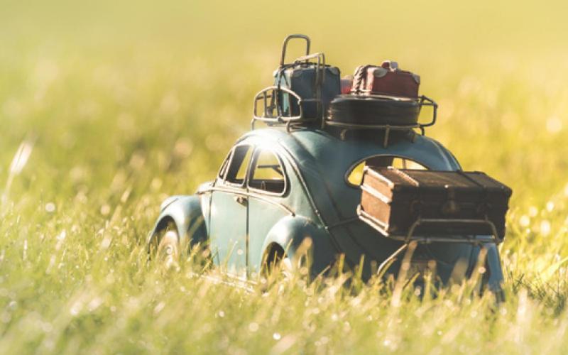Une pause au vert sur la route des vacances !